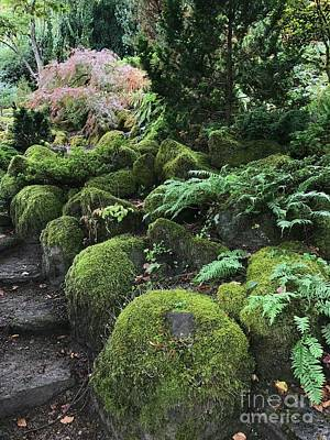 Photograph - Scottish Garden  by Charlene Mitchell