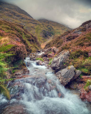 Scottish Mountain Stream Art Print by Ray Devlin