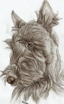 Scotties Drawing - Scottish Terrier by Be N