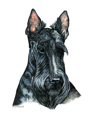 Scottish Dog Drawing - Scottish Terrier by Kathleen Sepulveda