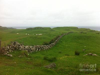 Photograph - Scottish Wall by Mary K Conaboy