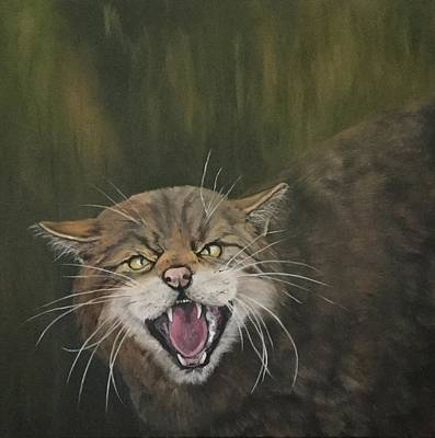 Painting - Scottish Wild Cat by Jean Walker