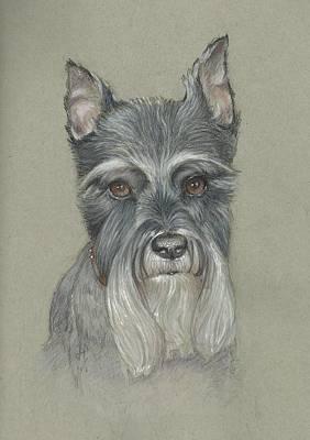 James Parker Drawing - Scotty by James Parker