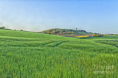 Photograph - Scrabo by Jim Orr