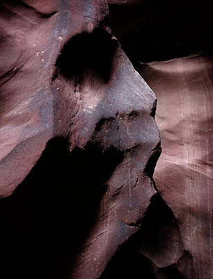 Photograph - Scream by Nicholas Blackwell