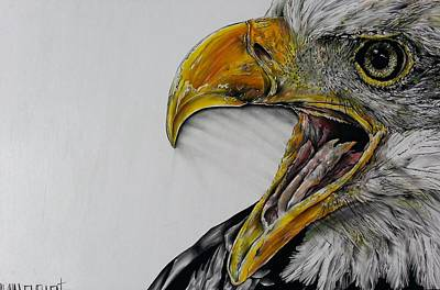 Bodybuilding Painting - Screaming Bald Eagle by Shawna Lewellen