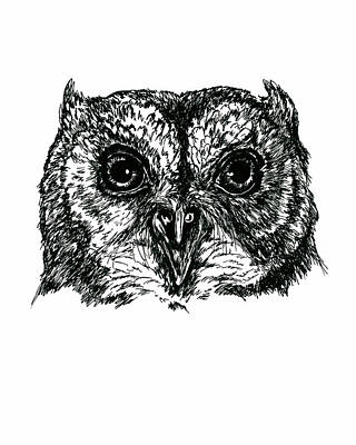 Drawing - Screech Owl Portrait In Ink by MM Anderson