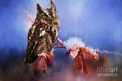 Digital Art - Screech Owl by Suzanne Handel