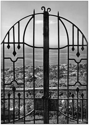 Photograph - Screened View B/w by Hanny Heim