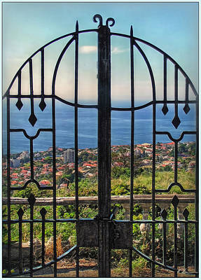 Photograph - Screened View by Hanny Heim