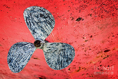 Screw Propeller Art Print by Delphimages Photo Creations