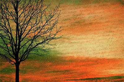 Handwriting Mixed Media - Scribble At Sunset by Trish Tritz