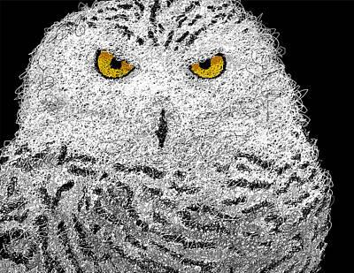 Yellow Beak Digital Art - Digital Scribble - Snowy Owl by Nathan Shegrud