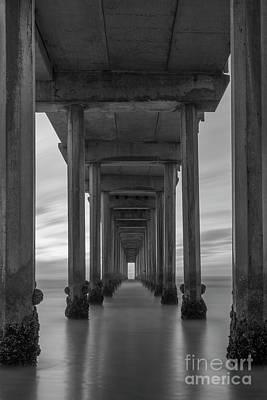 Photograph - Scripps Pier Pillars Bw by Michael Ver Sprill