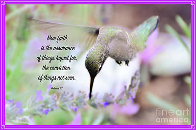 Photograph - Scripture Hummingbird by Debby Pueschel