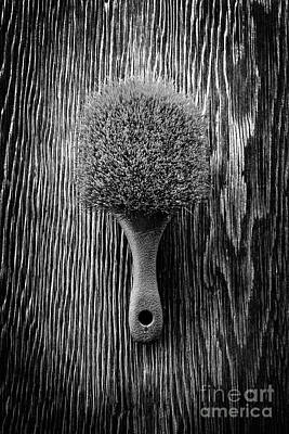 Scrub Brush Up Bw Art Print