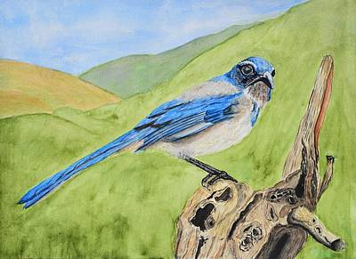 Abstract Oil Paintings Color Pattern And Texture - Scrub Jay Sitting on Dead Tree by Linda Brody