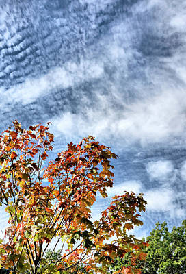Photograph - Scudding Sky by Cate Franklyn