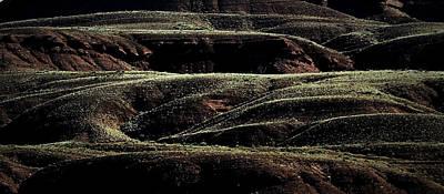 Photograph - Sculptural Landscape by Nadalyn Larsen