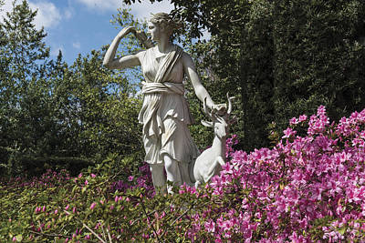 Photograph - Sculpture Of Diana In Houston by Carol M Highsmith