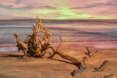 Photograph - Sculptures On The Beach by John M Bailey
