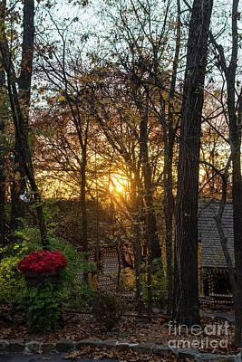 Photograph - Sdc Woods Sunset by Jennifer White
