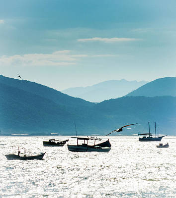 Freedom Photograph - Sea And Freedom by Martin Lopreiato