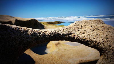 Photograph - Sea And Rock Life by Laurie Pike