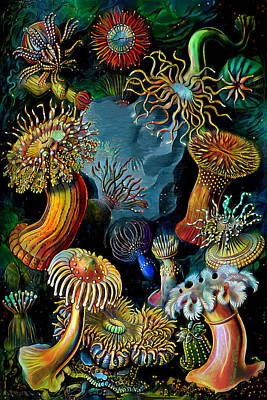 Digital Art - Sea Anemones 2 by Pennie McCracken