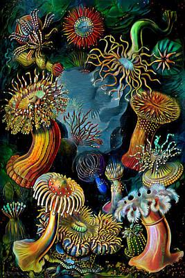 Digital Art - Sea Anemones 2 by Pennie McCracken