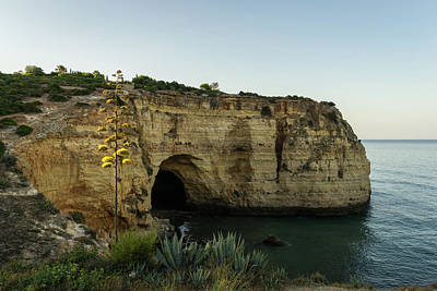 Photograph - Sea Cave And Agave Bloom Spike - The Magic Of Algarve Portugal by Georgia Mizuleva