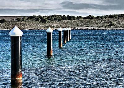 Photograph - Sea Centinels  by Pedro Cardona Llambias