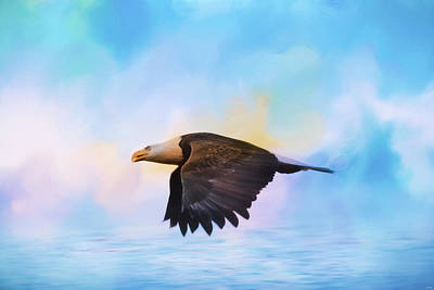 Photograph - Sea Coasting Bald Eagle Art by Jai Johnson