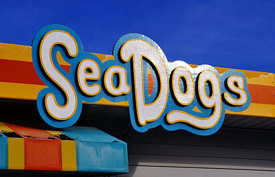 Photograph - Sea Dogs Sign by David Lee Thompson