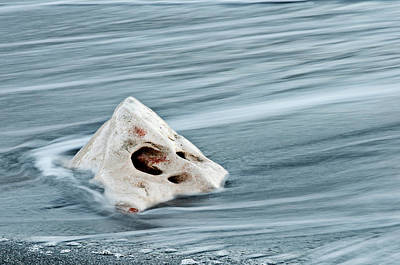 Photograph - Sea Ghost By Pedro Cardona by Pedro Cardona Llambias