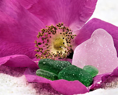 Photograph - Sea Glass And Beach Rose by Janice Drew