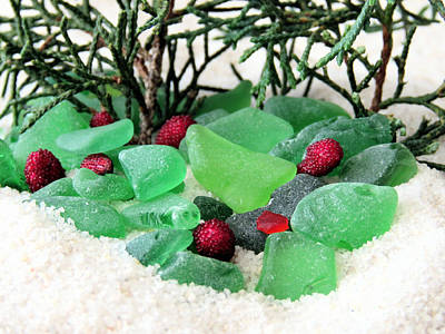 Photograph - Sea Glass Berries And Pines by Janice Drew