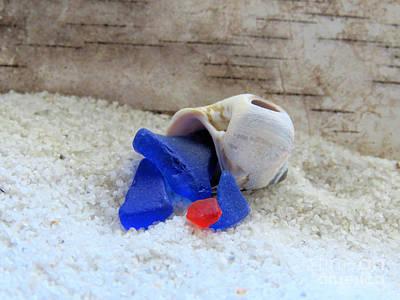 Photograph - Sea Glass Hermit Crab  by Janice Drew