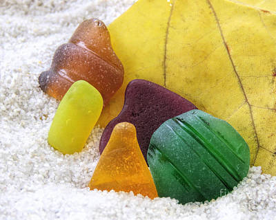 Photograph - Sea Glass In Fall Colors by Janice Drew
