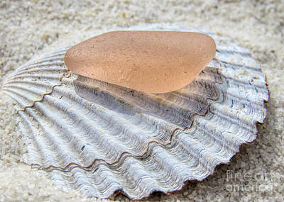 Photograph - Sea Glass In Pink Blush  by Janice Drew