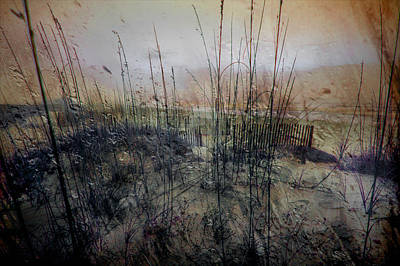Photograph - Sea Grass On The Beach On A Foggy Morning_ by Michael Thomas