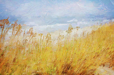 Mixed Media - Sea Grasses In The Dunes by Clive Littin