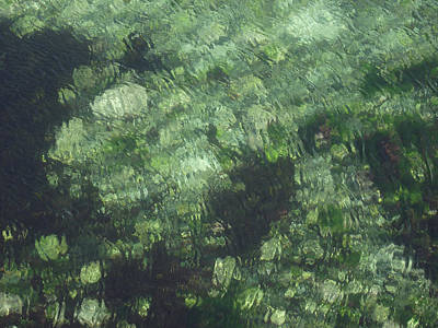 Photograph - Sea Green Abstract by Jayne Wilson