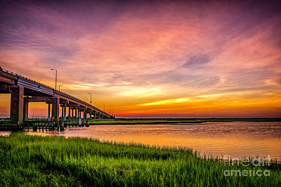 Photograph - Sea Isle Sunset by Nick Zelinsky