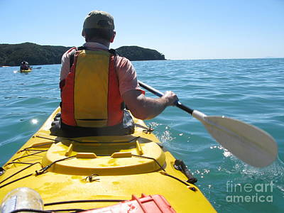 Photograph - Sea Kayaking In New Zealand by Patricia Hofmeester