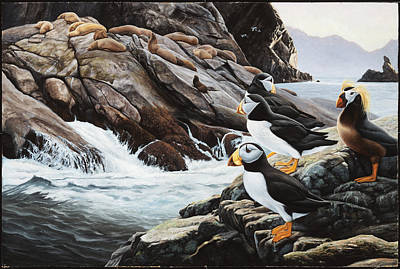 Daniel Pierce Painting - Sea Lion Island-puffins by Daniel Pierce