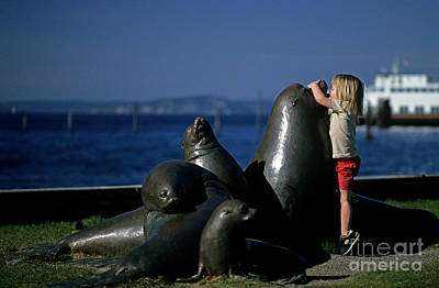 Photograph - Sea Lion Sculpture  by Jim Corwin