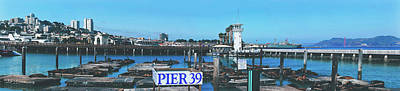 Photograph - Sea Lions On Pier 39 by Brocken Inaglory