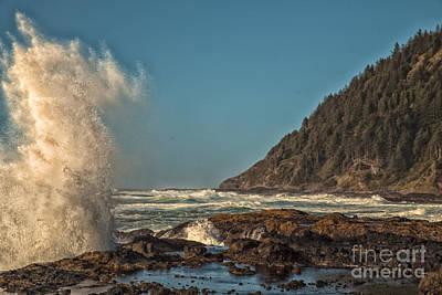 Photograph - Sea Monster by Billie-Jo Miller