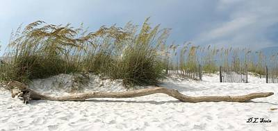 Sea Oats And Driftwood Art Print by Dennis Stein
